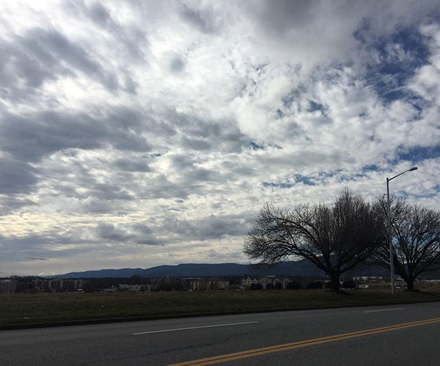 Beautiful sky and a beautiful friend.  #drive #sky #clouds #road #furry #tress #photography #stayinspired
