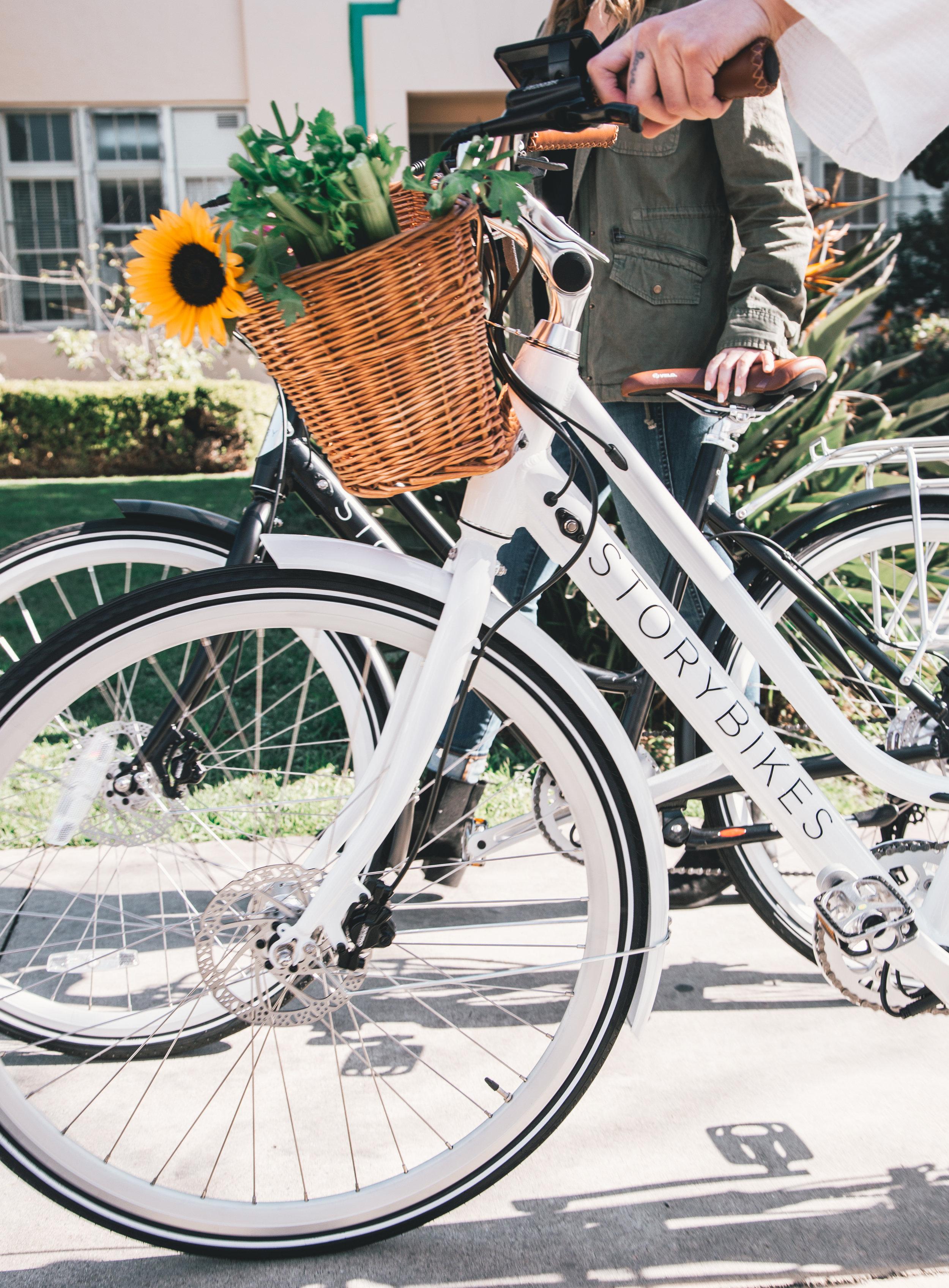 2 bikes.jpg