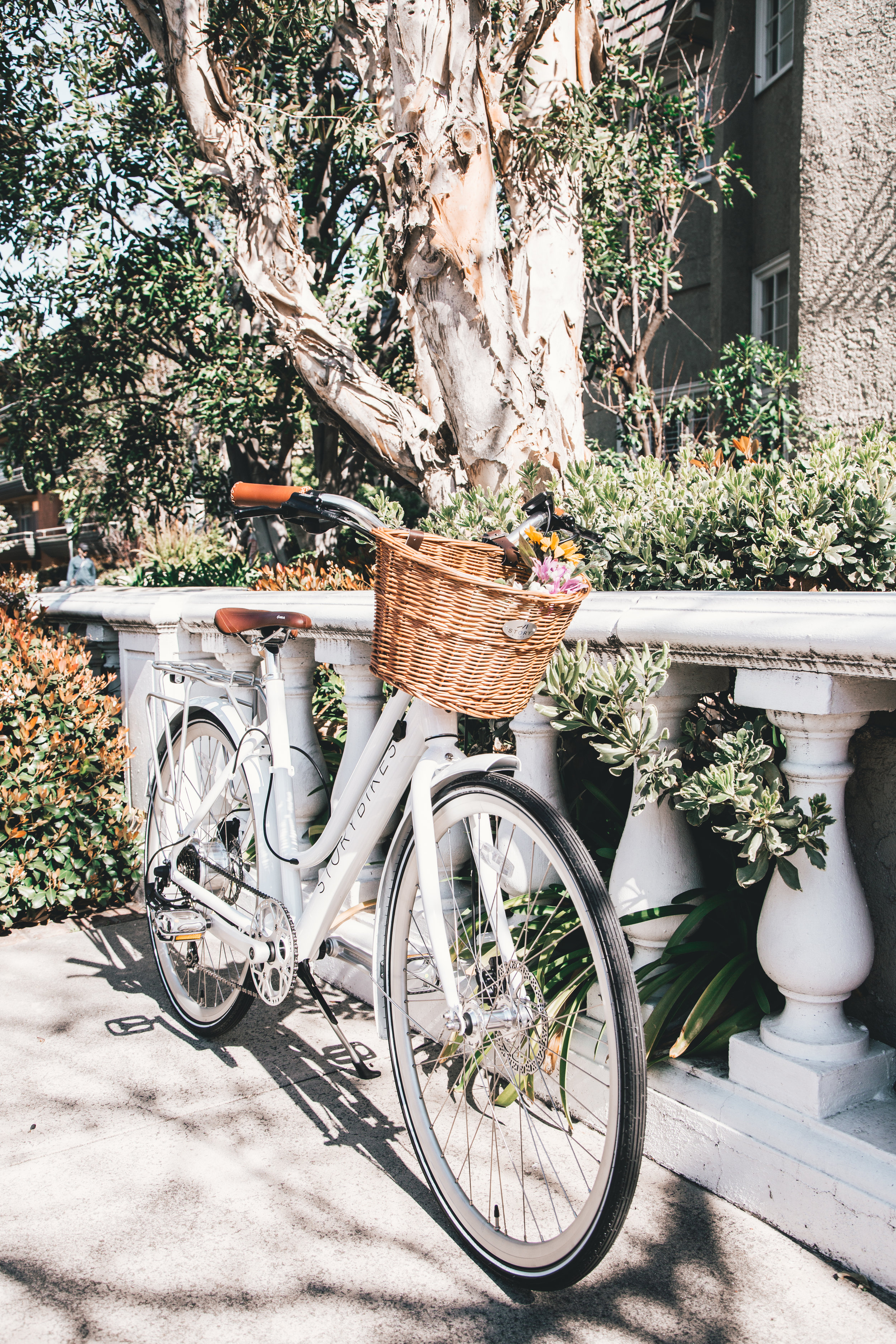 white bike.jpg