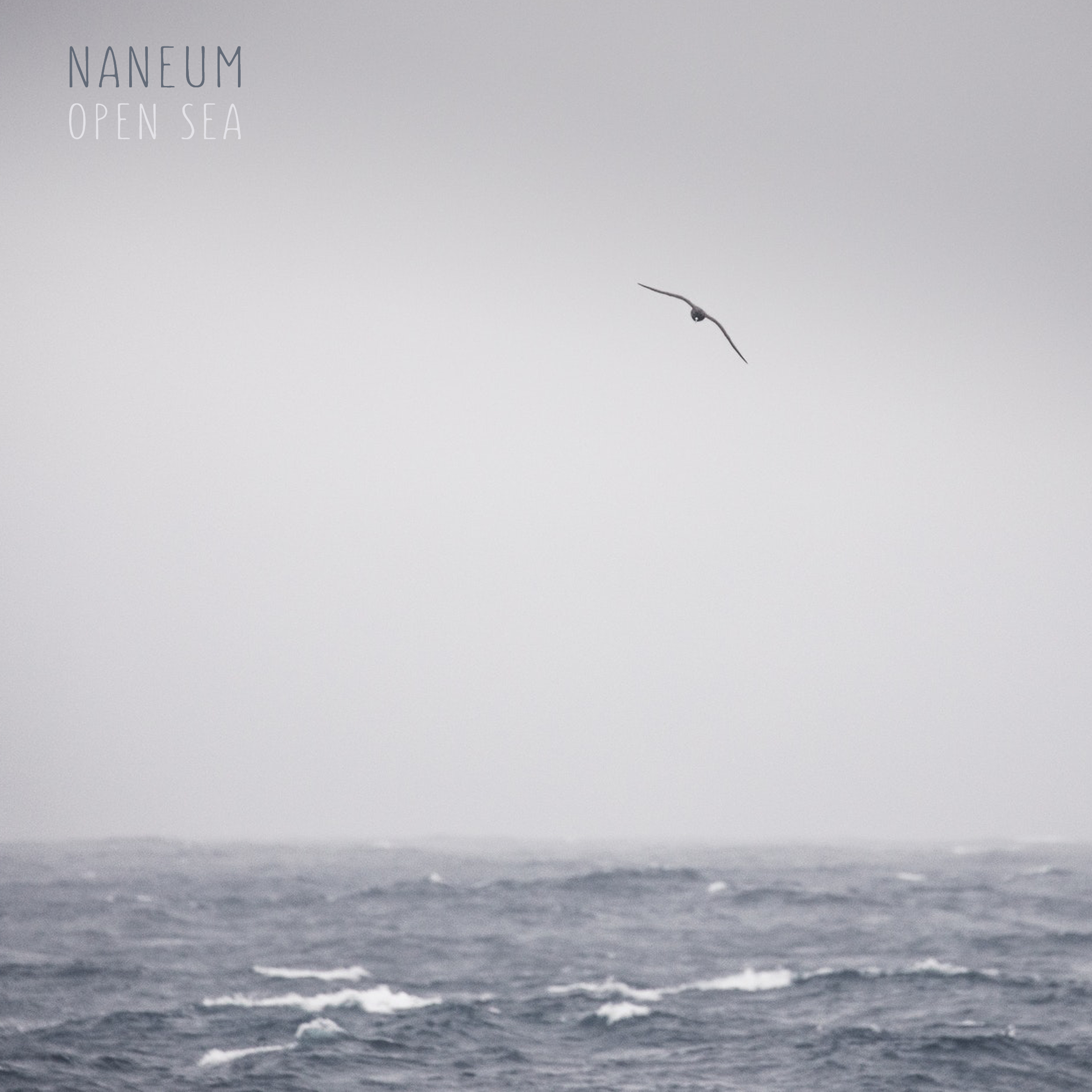 Naneum-Open Sea - Naneum, pronounced [næ-nəm], is created byJon Solo, who has been the trusted keys and guitar player for artists Angus and Julia Stone, Passenger, and Brett Dennenfor over 10 years. Between tours, Solo has been composing and recording his own music. In 2018, he self-released his first album, Home For Hemingway, which was well received by fellow artists and landed him an opening slot in Europe last summer for Angus and Julia Stone.In the fall of 2018, Solo starting recording Open Seaat his home studio in Brooklyn, NY. The collection of songs were written from the concept of ocean sounds. Solo played all the instruments on the album, however, he was joined by Israeli artist and cellist, Hadas Kleinman on track 4, Accretion.