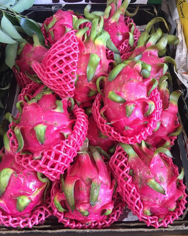 How stunning are these dragon fruit? Tropical fruit now on the shelves at Preston Market. #summerfruit #prestonmarket #plasticpackaging #tropicalfruit #dragonfruit