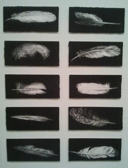 Jennifer Keeler-Milne, '40 Feathers,' (detail)