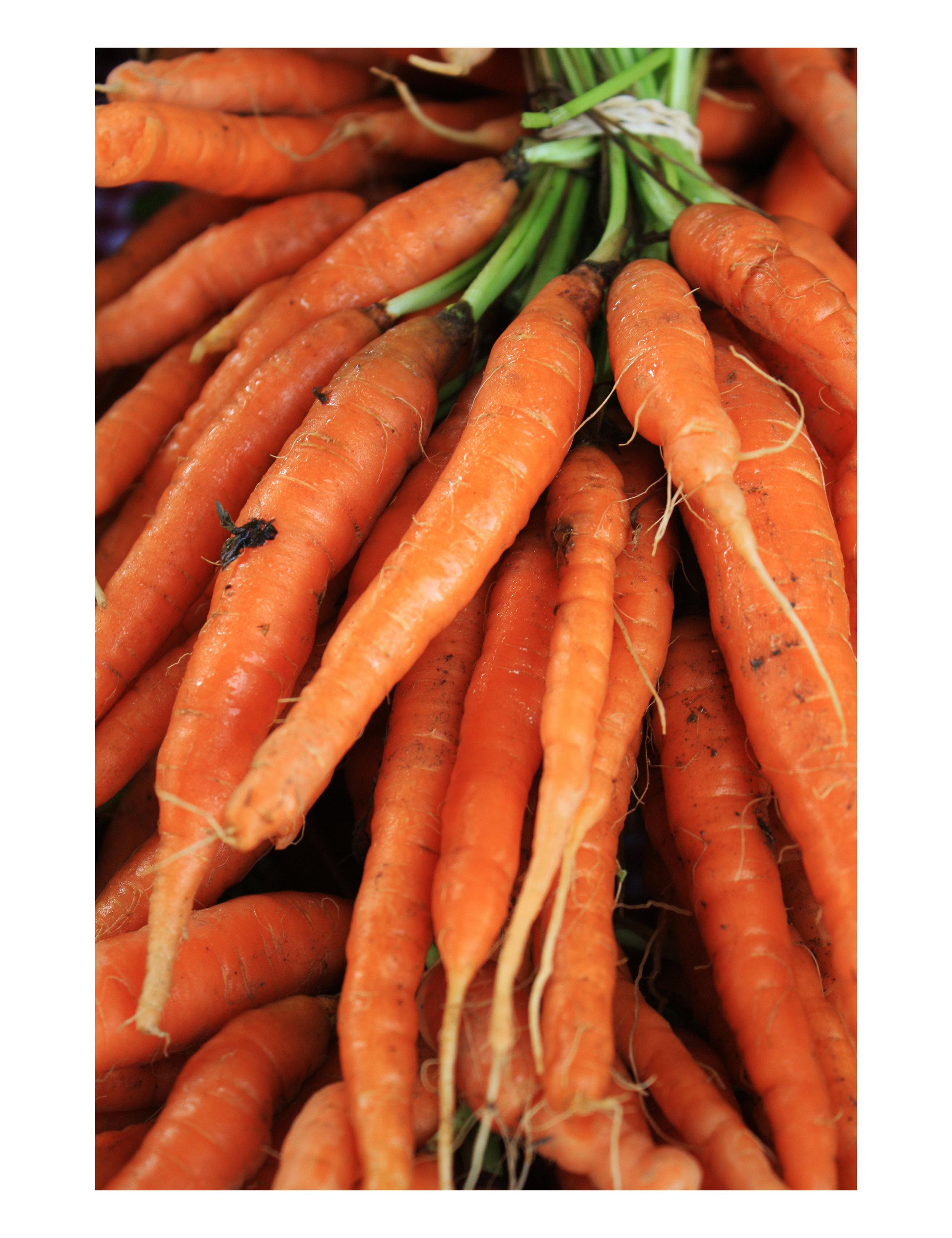 Tori Twine carrots 10x13.jpg