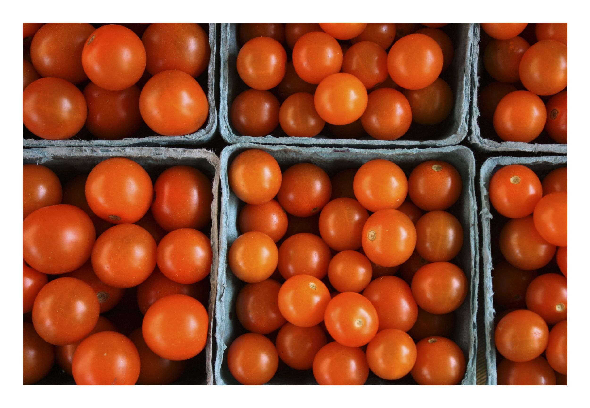 Tori Twine cherry tomatoes 8x12.jpg