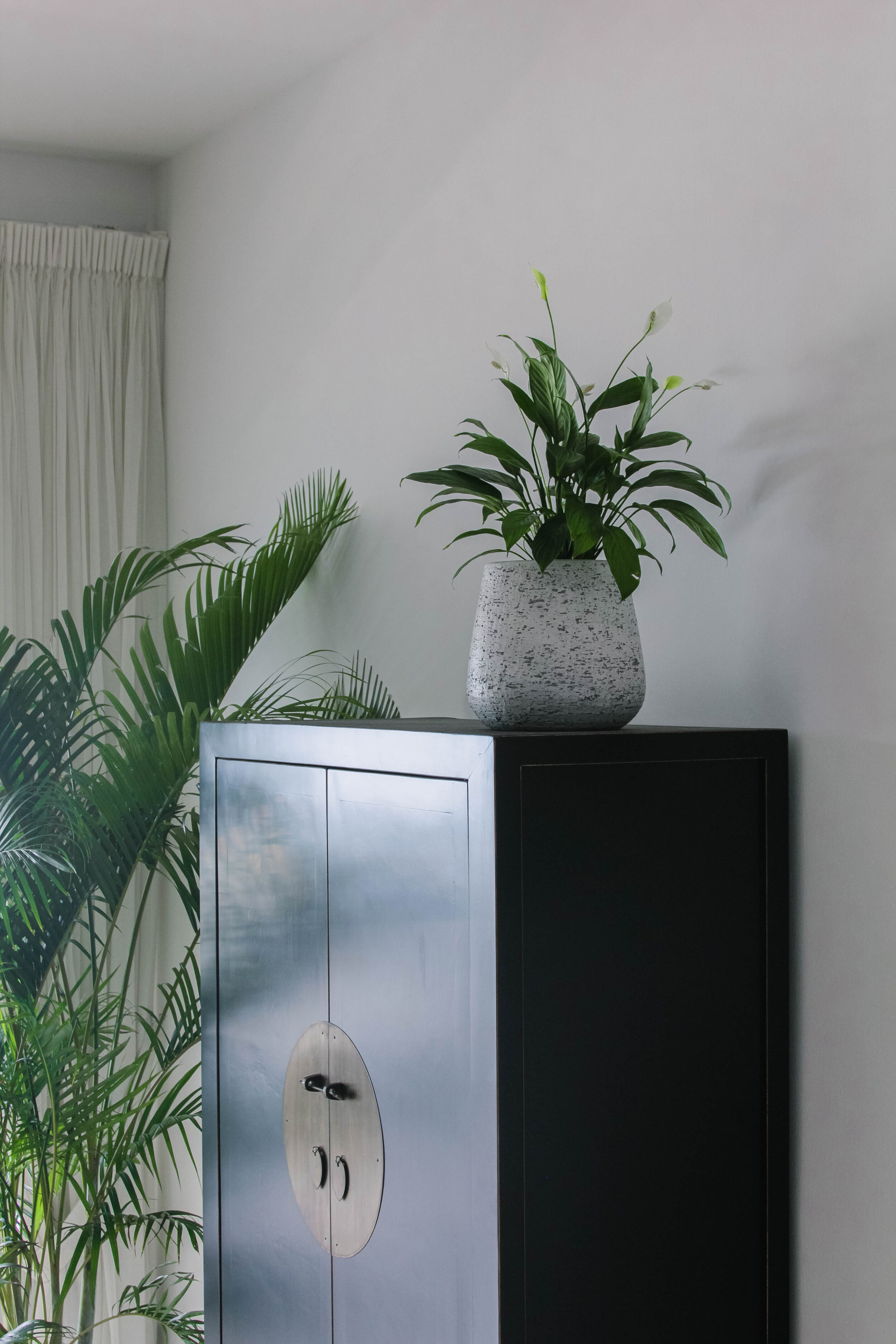 Tropical Boho Interior Styling (61 of 104).jpg