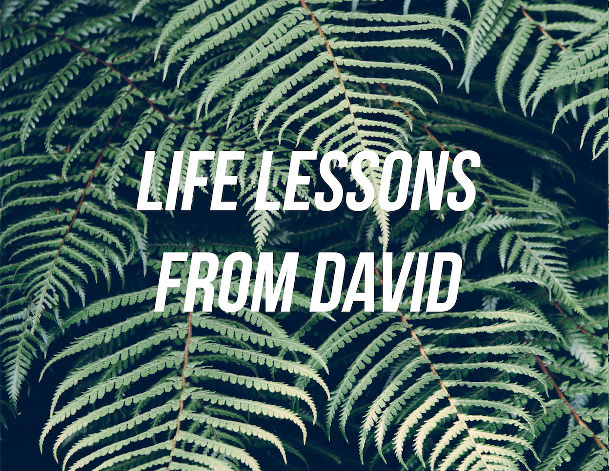 Life Lessons from David.png