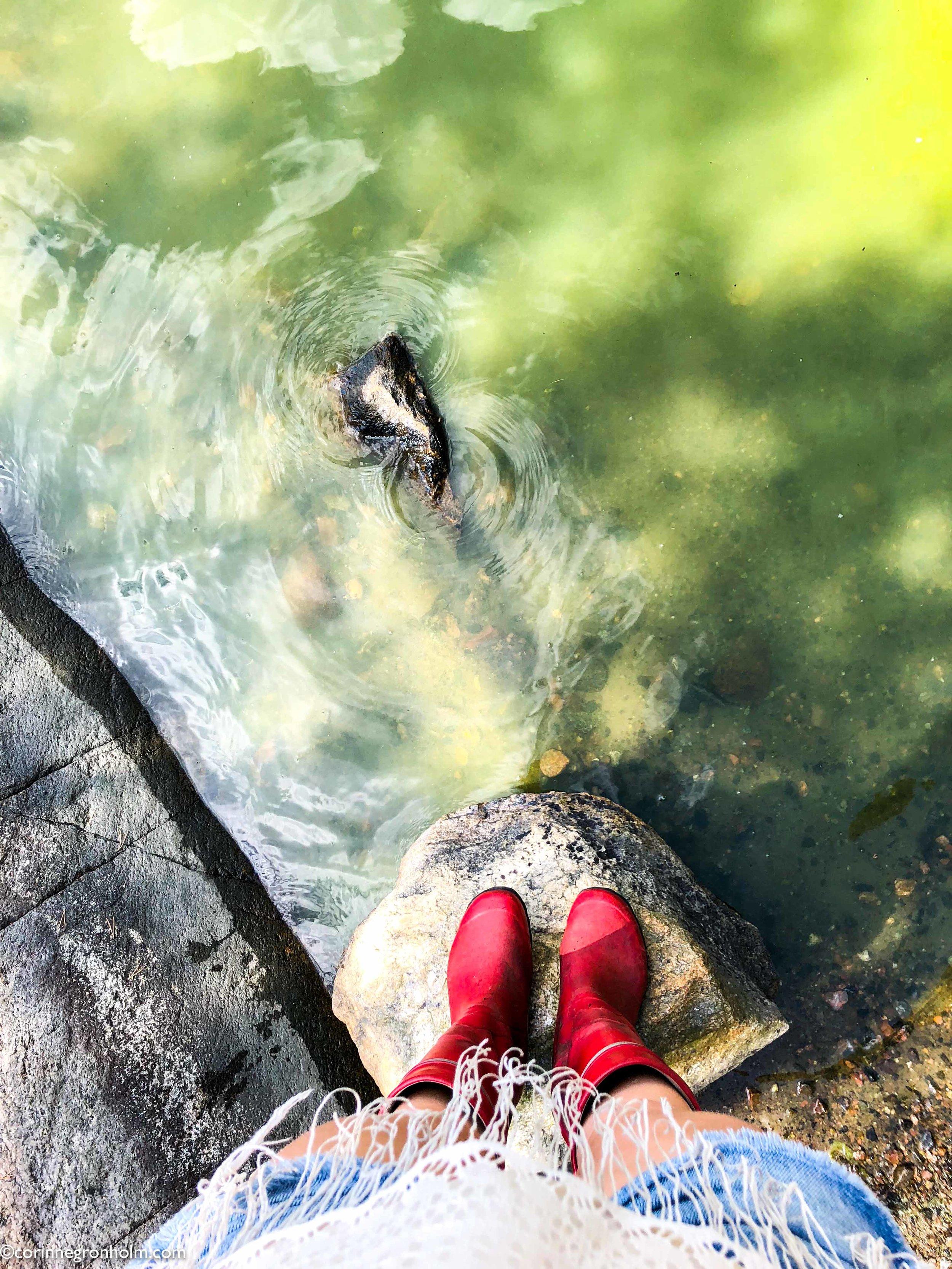 alger.jpg