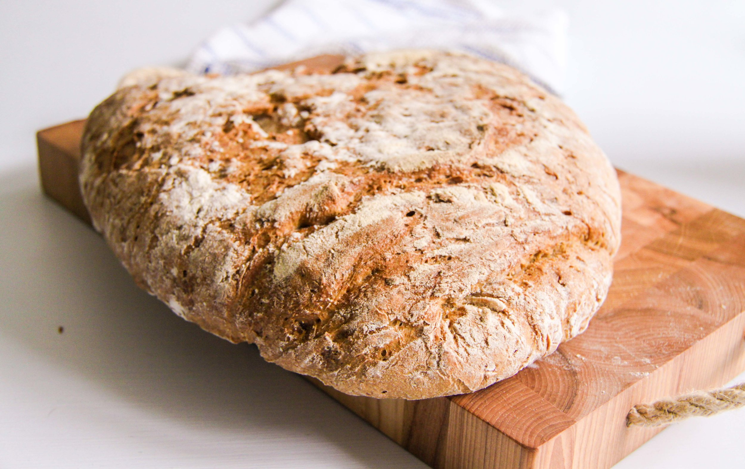 Grovt morotsbröd med rågmjöl