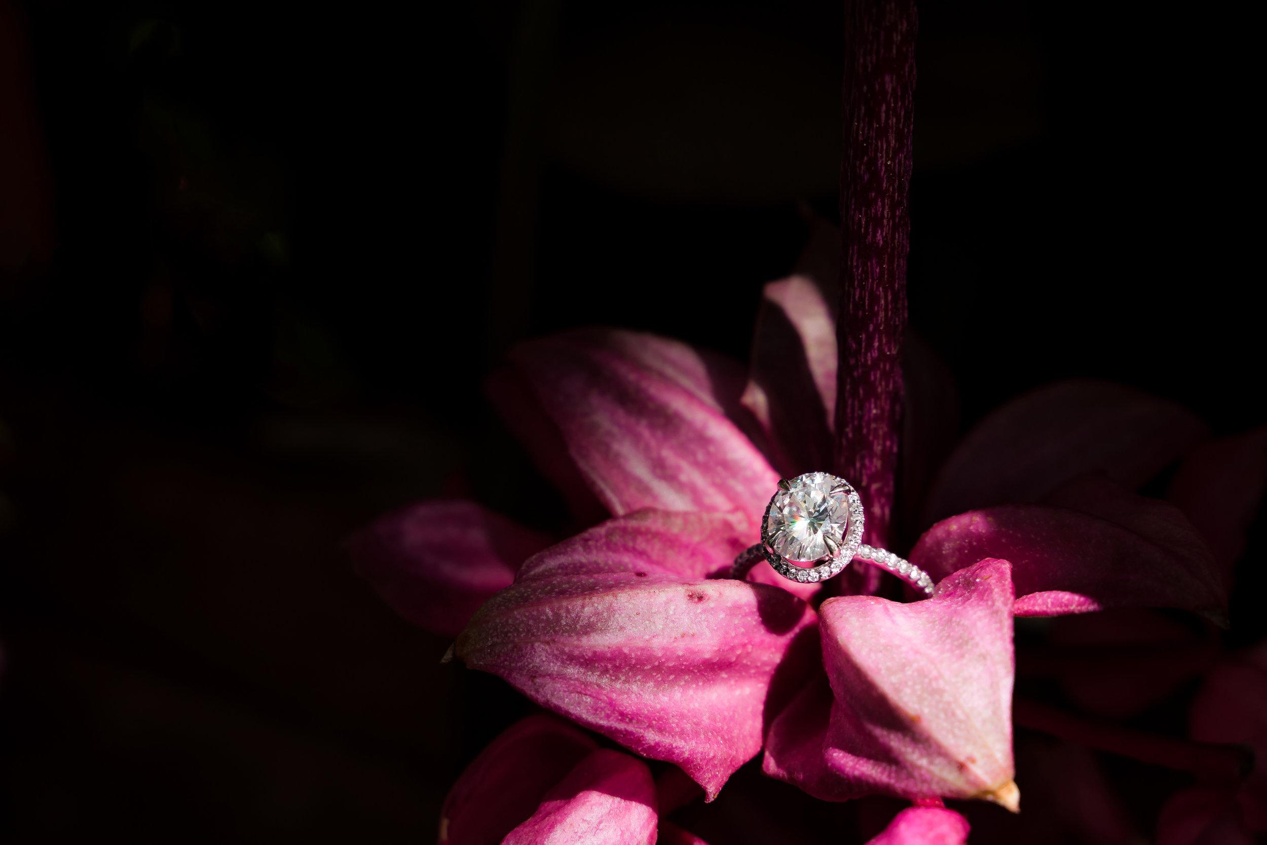 Jennyfer.Roody.Engagement.Photography.MarcDanielePhotography.107.jpg