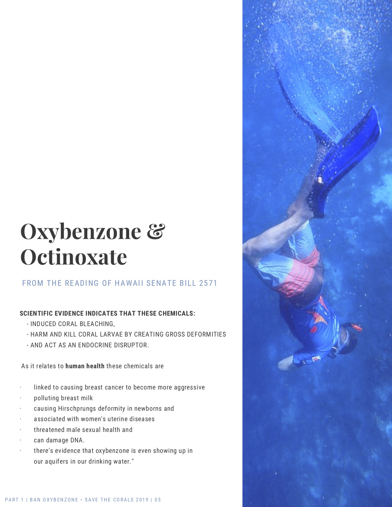 ban-oxybenzone-part-1-oxybenzone-and-octinoxate-05.jpg