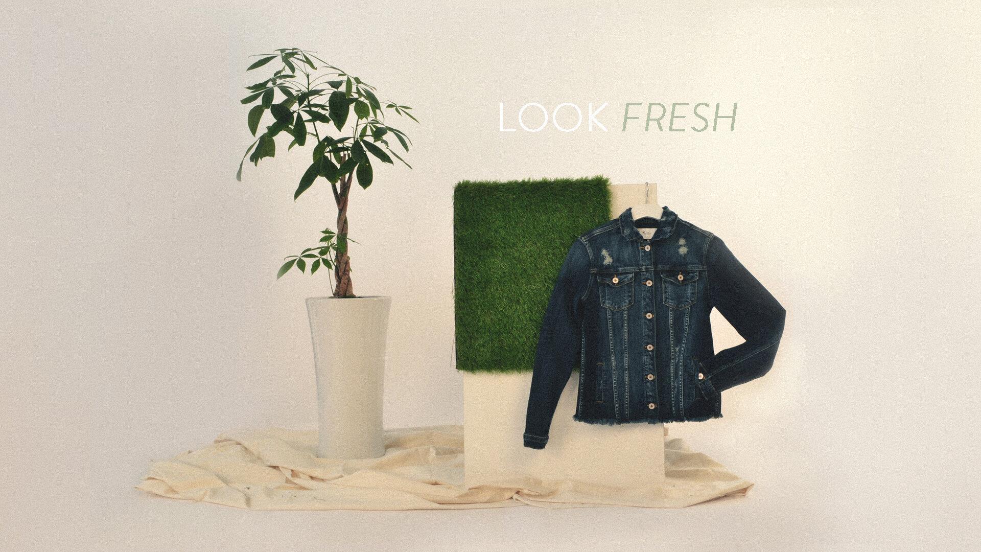 Look Fresh.jpg