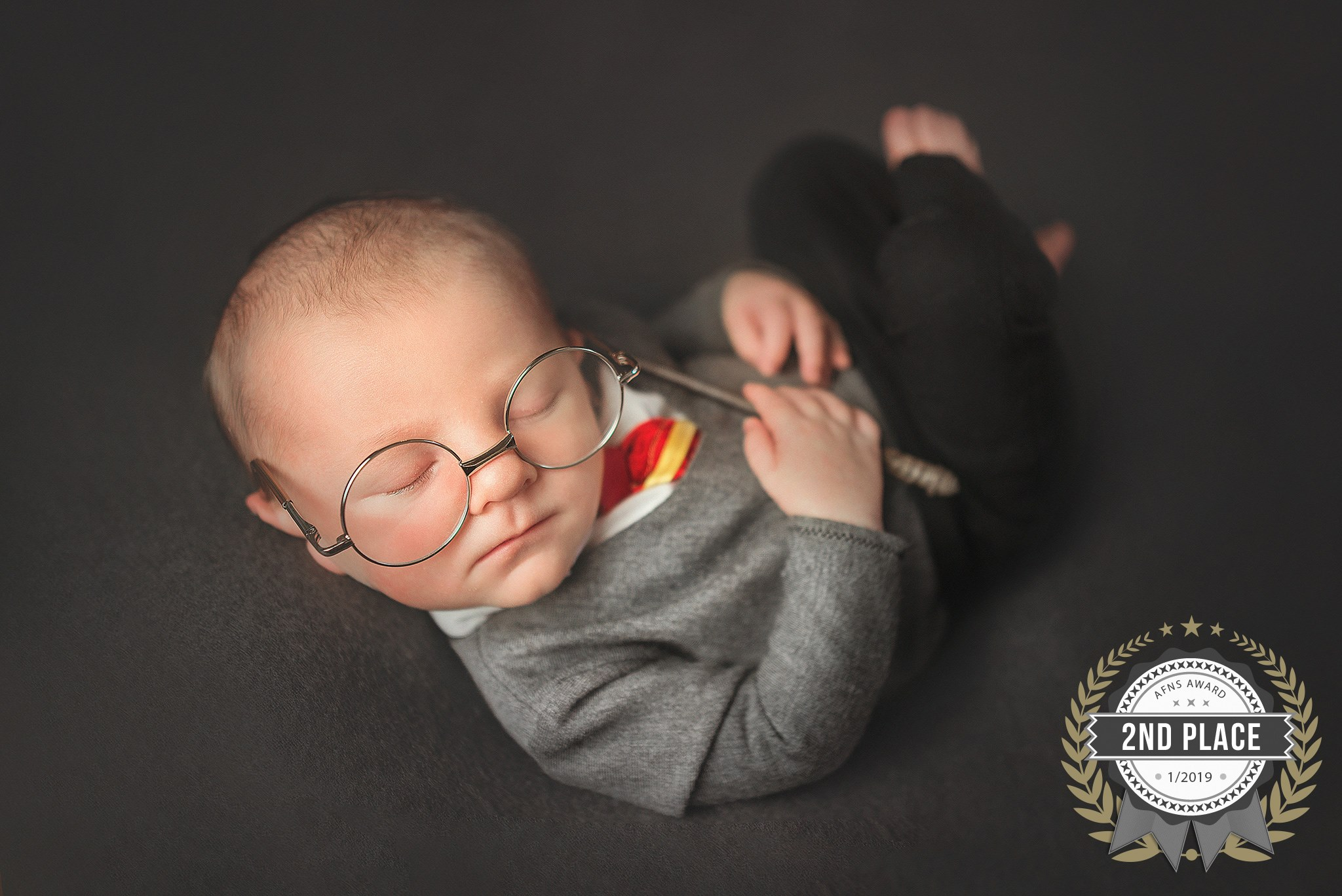 THE AFNS AWARD-  AWARDS FOR PHOTOGRAPHERS IN THE FIELD OF NEWBORN PHOTOGRAPHY & MATERNITY PHOTOGRAPHY
