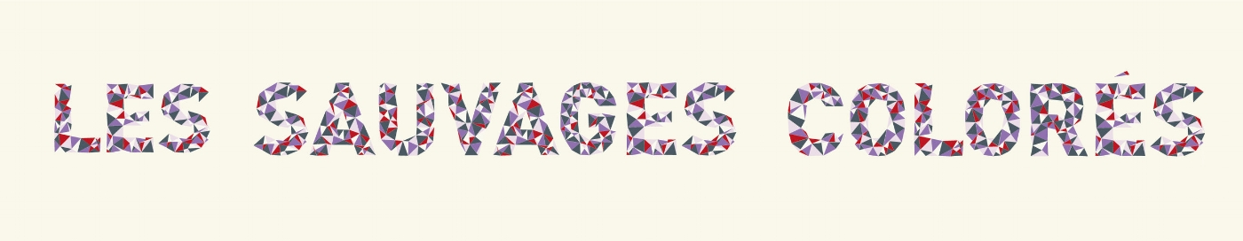 logo-sauvages-colorés-cache-cahe.jpg