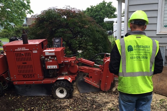 tree-stump-grinder-with-a-fordable-tree-service-employee.jpg