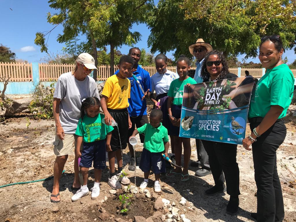 Claudia Creque Educational Centre has dedicated sections of their Anegada gardens to produce food crops specifically for the National Parks Trust's Iguana Head Start Program. In addition to assisting with these plantings, Seeds of Love donated soil and shade cover to the Green Sprouts CCEC program.  Thank you to Nea Talbot of Green and Clean VI and Leslie Maduro of the Department of Agriculture for their generous donation of seeds and plants and participation at the planting at the Robinson O'Neal Memorial Primary School in Virgin Gorda.