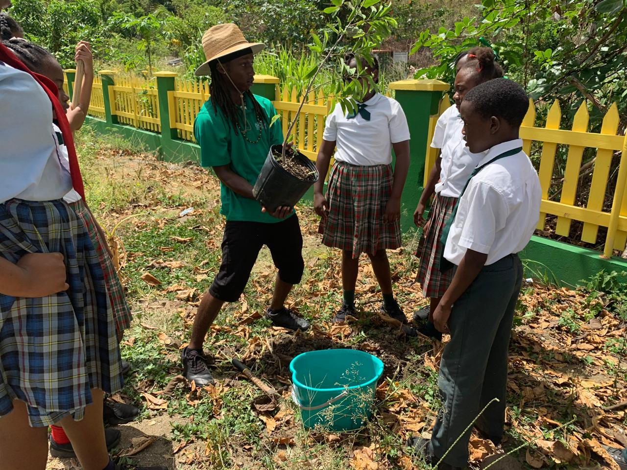 Students planted a sugar apple tree at Ivan Dawson Primary School in Cane Garden Bay, Tortola, thanks to the donation of Patricia Parker and her daughter Zoriah.