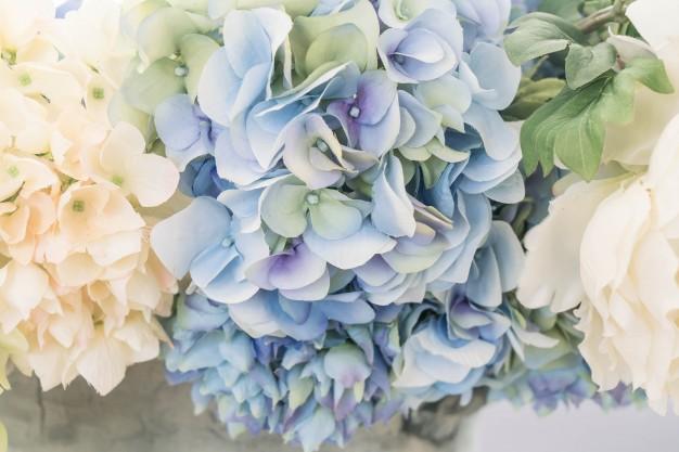 bello-fiore-di-bouquet-per-sfondo_1339-4270.jpg