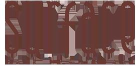 logo-surface.png