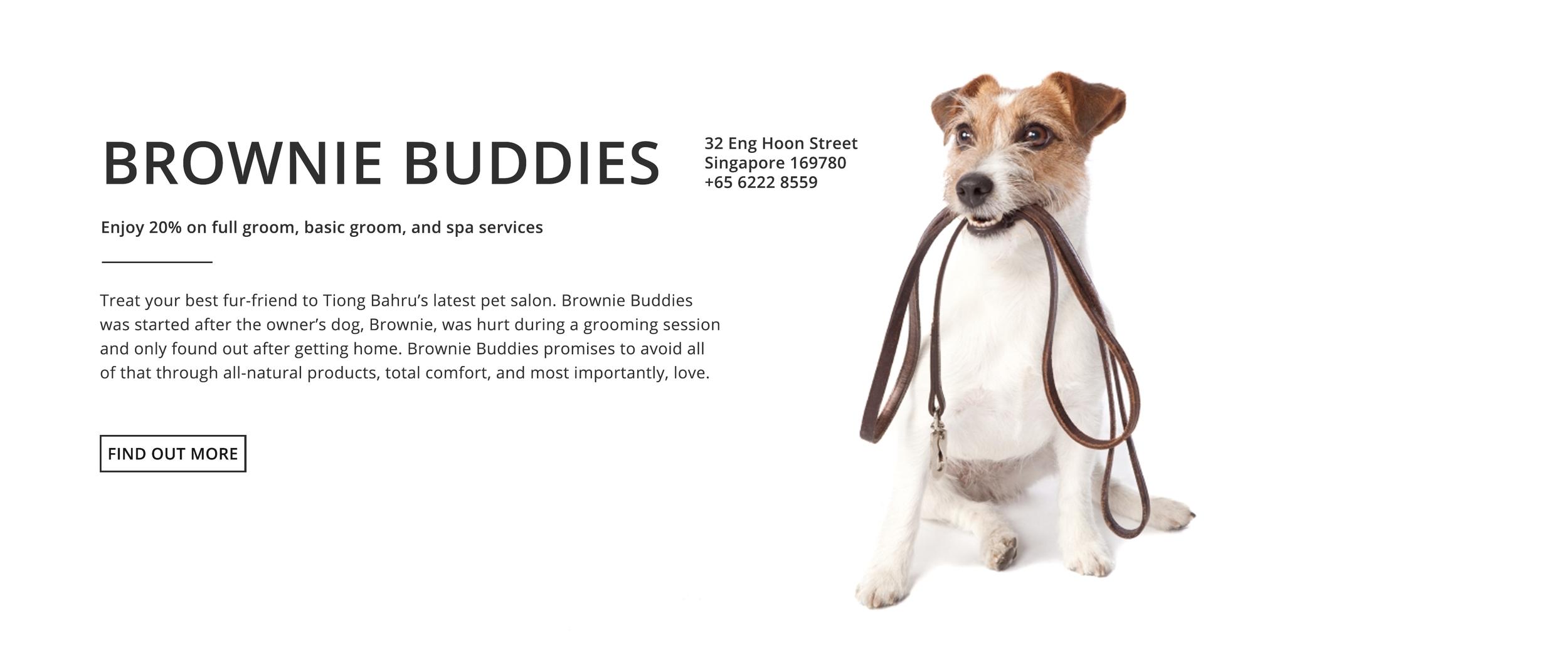 Brownie Buddies_.png
