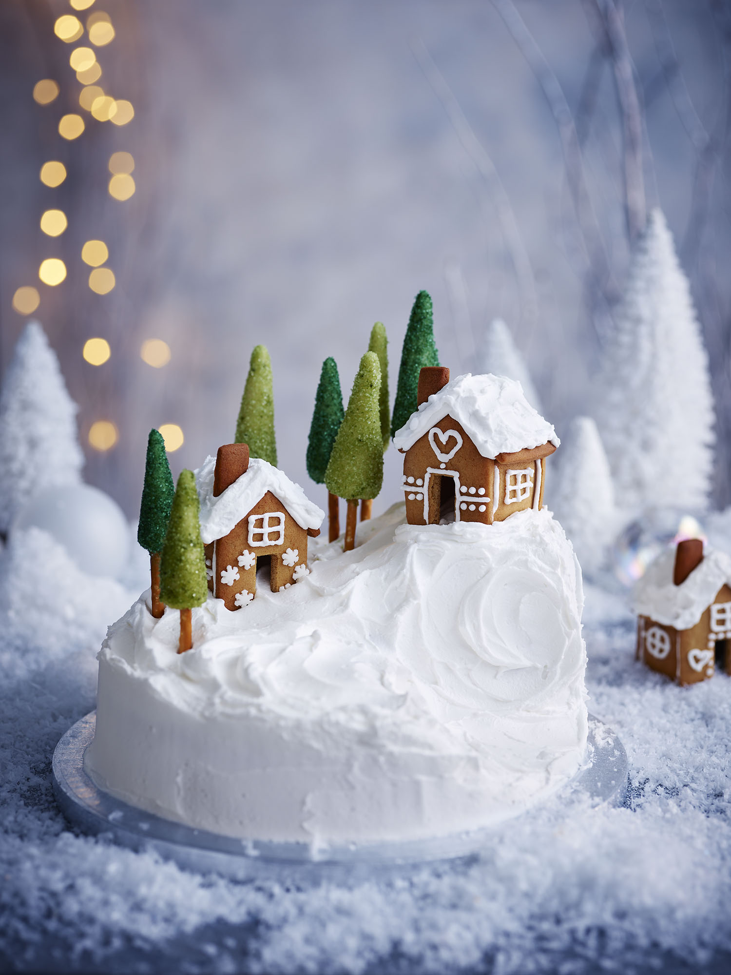 Alpine Christmas Cake Photograph Gareth Morgans	Prop Styling Olivia Wardle Recipe Olivia Spurrell