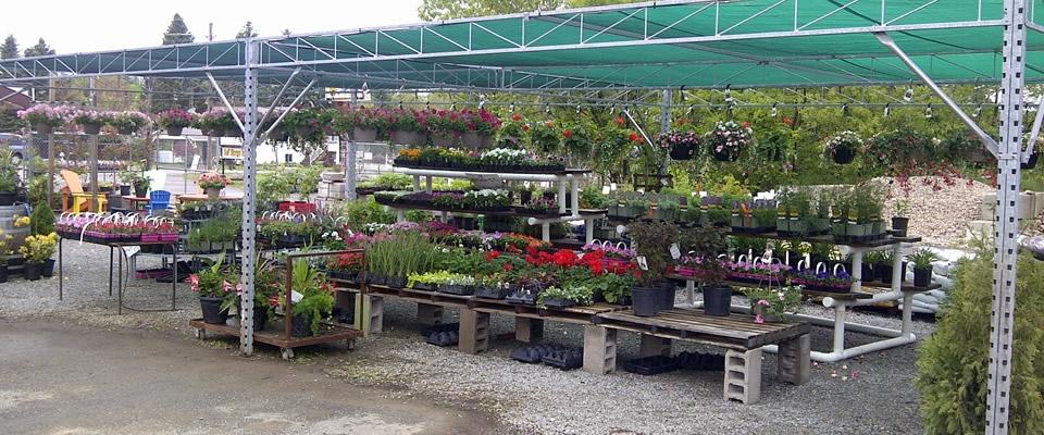 garden.centre.jpg