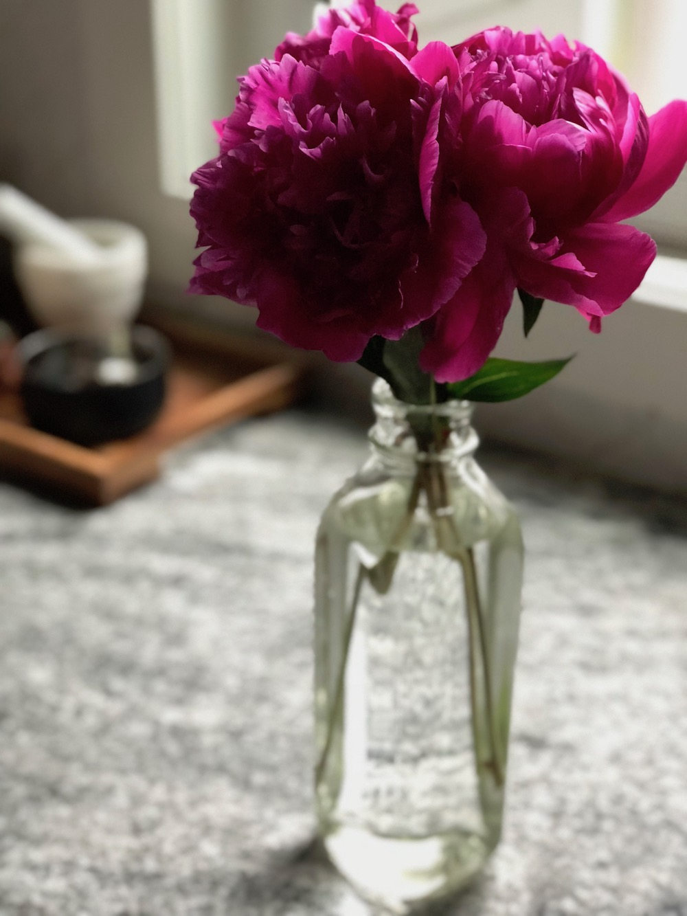 PEONIES SMALL.jpeg