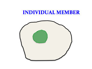 Turquet - INDIVIDUAL MEMBER.jpg