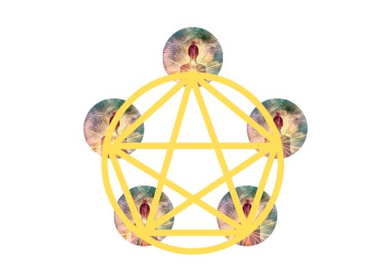 Meditación Pentáculo.png