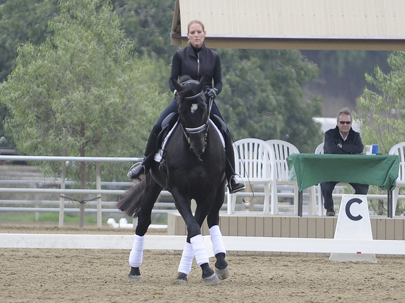 Kim Kulesa teaches horses and riders to reach their full potential. Her students have been top in Hawaii, California and USDF year end award winners through the FEI levels.