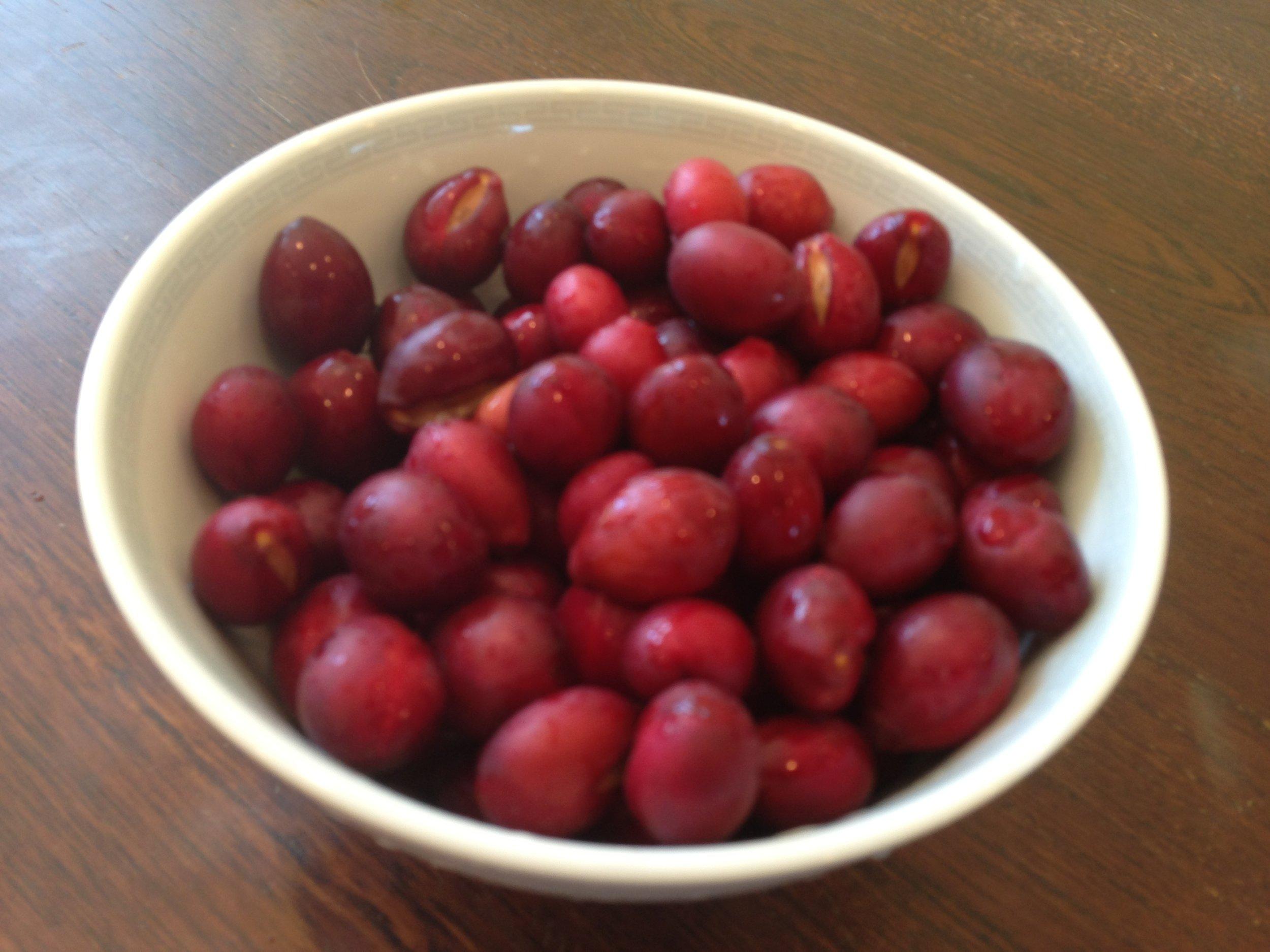 Catalina Cherries