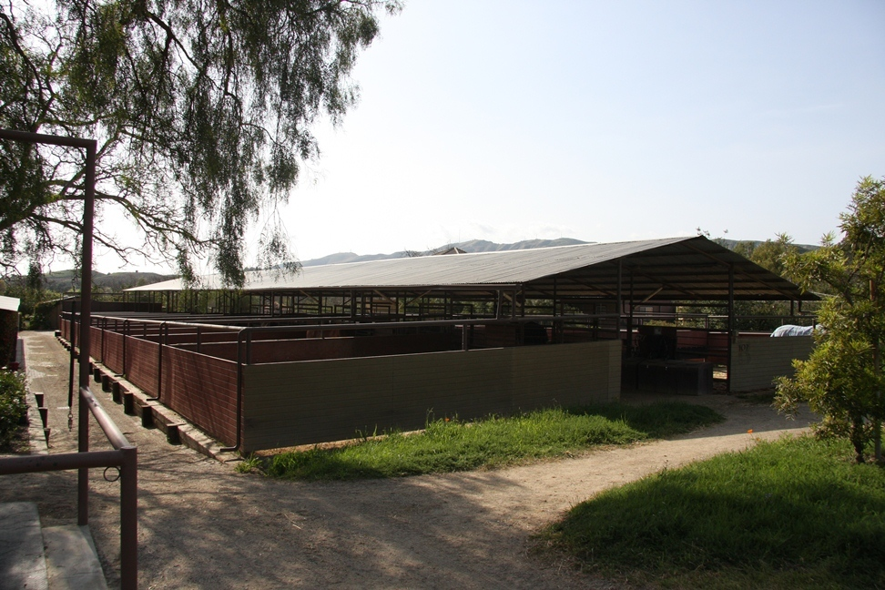 Ironwood Barn, located just South of the Covered Round pen between the East and West Dressage Arenas.