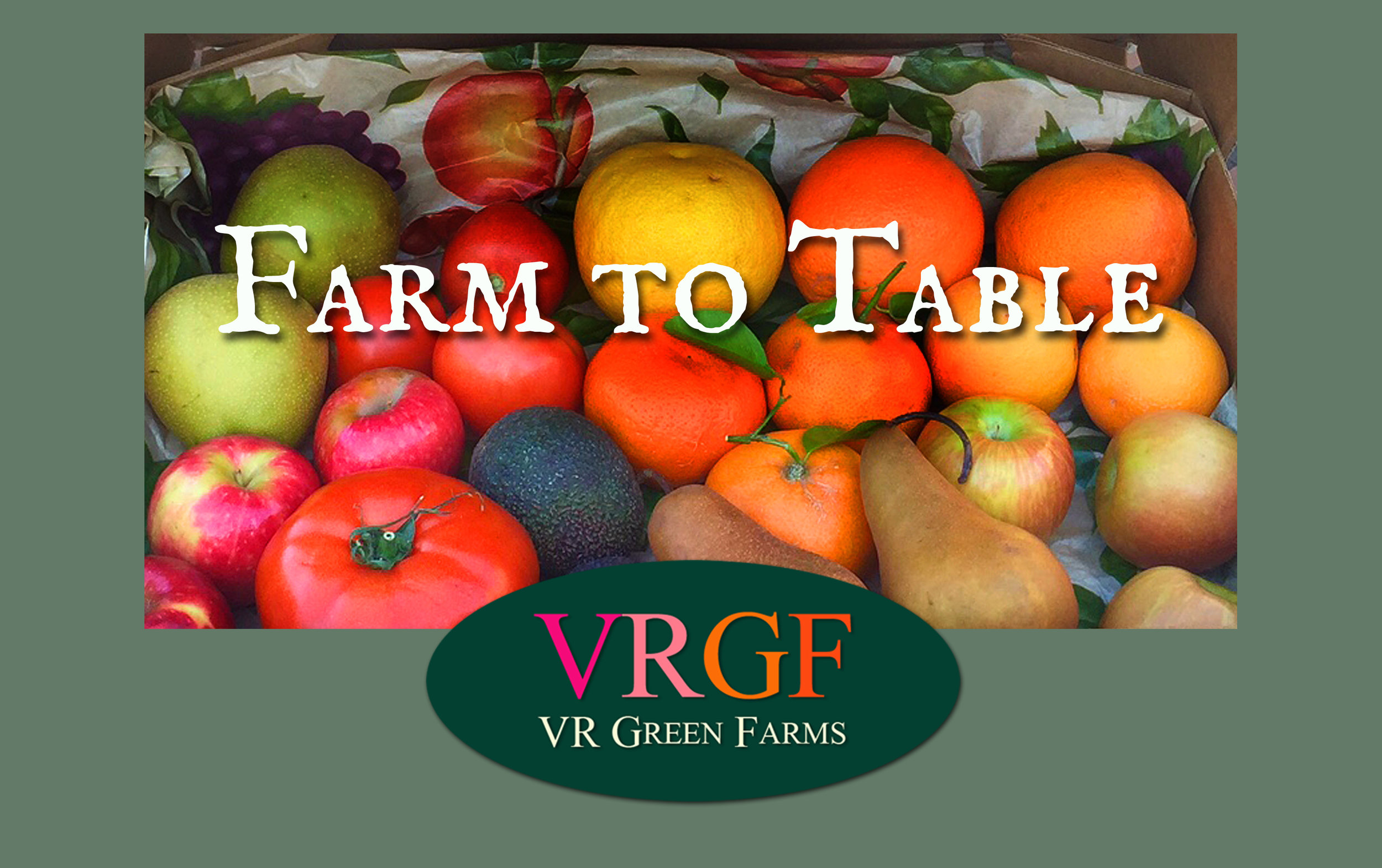 "VR Green Farms - San ClementeFresh Italian vegetables. That's the story and they're sticking to it. ""First we drew a line in the dirt and said 'let's plant here. And here. And here.' Then we brought in soil experts, water analysts, weather gurus and told them 'make it natural, no funny pellets, amend our soil in a good way.' Meanwhile we germinated over 30 heirloom vegetable seeds from Italy, transplanted them in the Old World tradition, and planted them with our Italian ancestors in mind."""