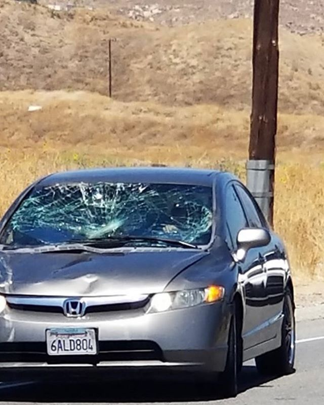 RIP donkey. I hope the people were okay too. Happened today in Reche Canyon.