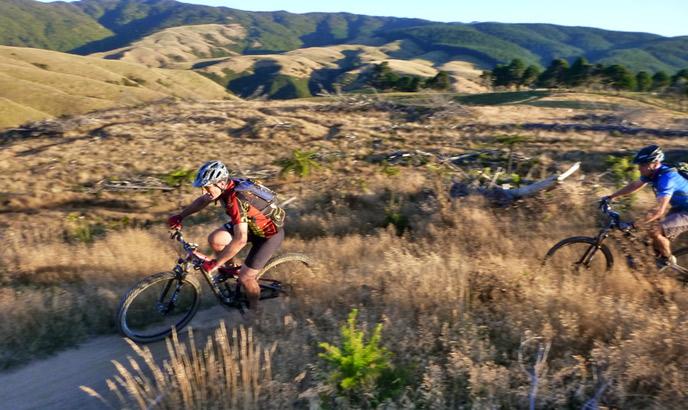 luxury holidays nz mountainbiking