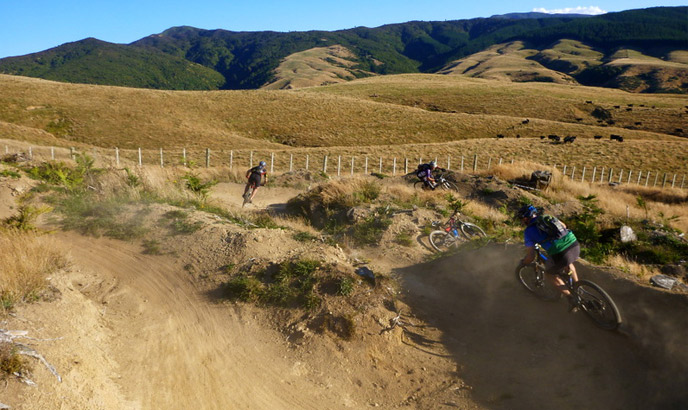 new zealand luxury cycling vacation