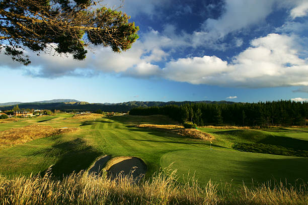 new zealand golf tours