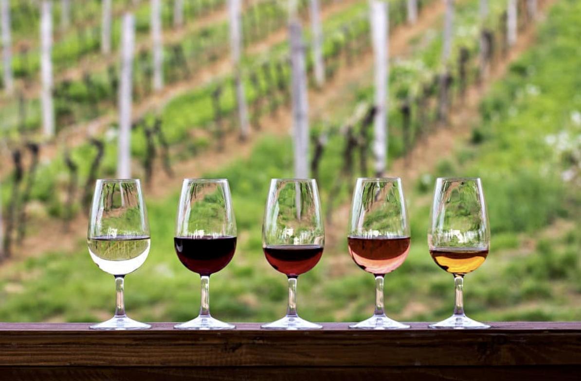 tasting-room-wine-tasting