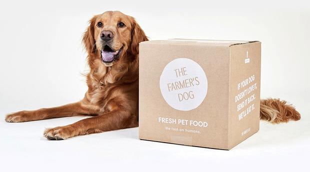 labador-next-to-a-farmers-dog-box.jpg