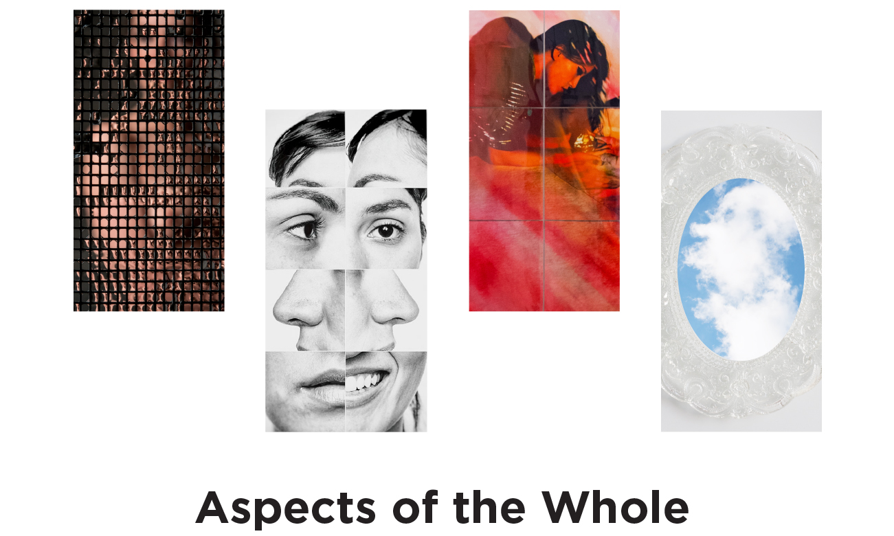Aspects of the Whole - March 9 – April 27, 2017