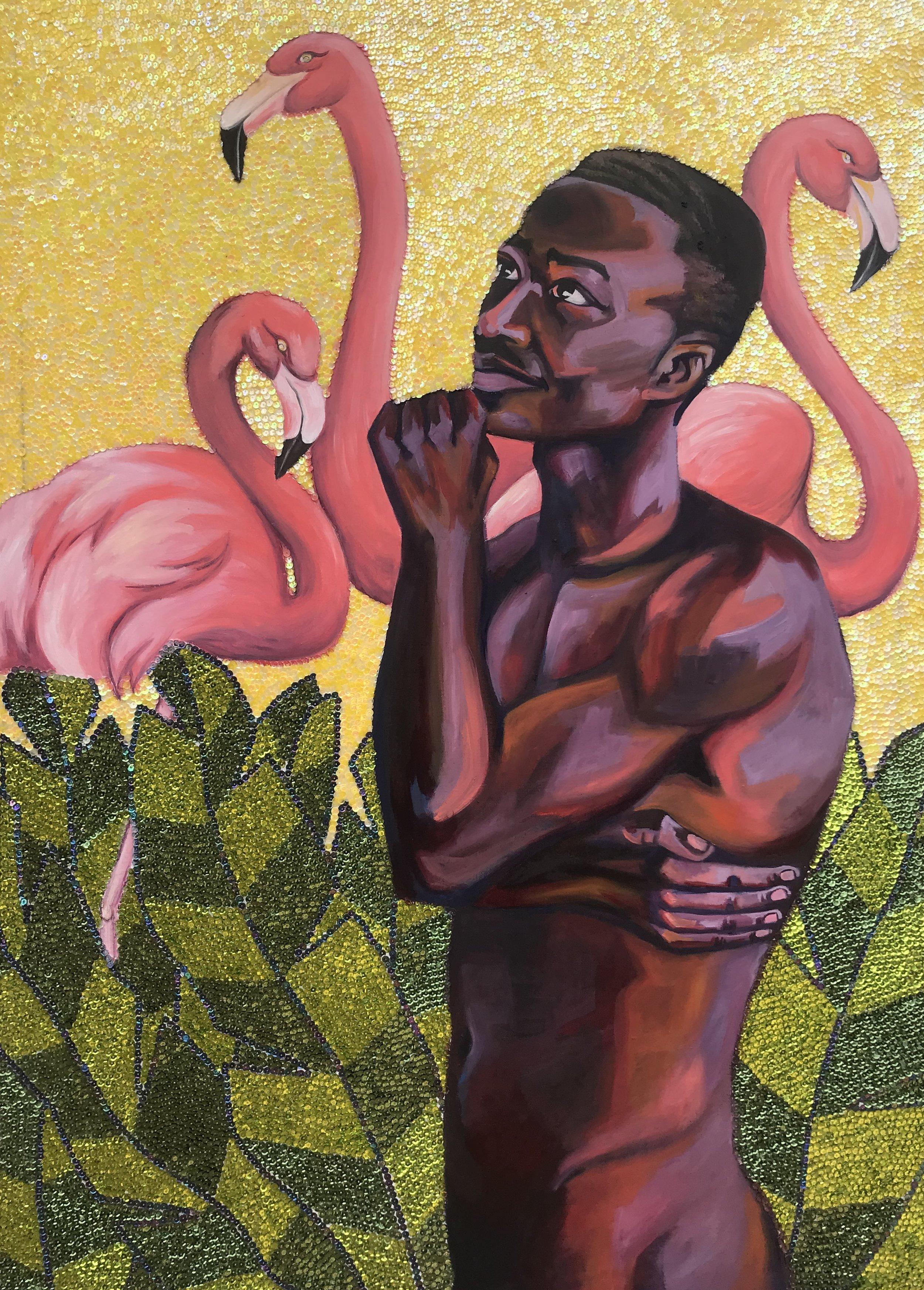 The Flamingos of Haiti