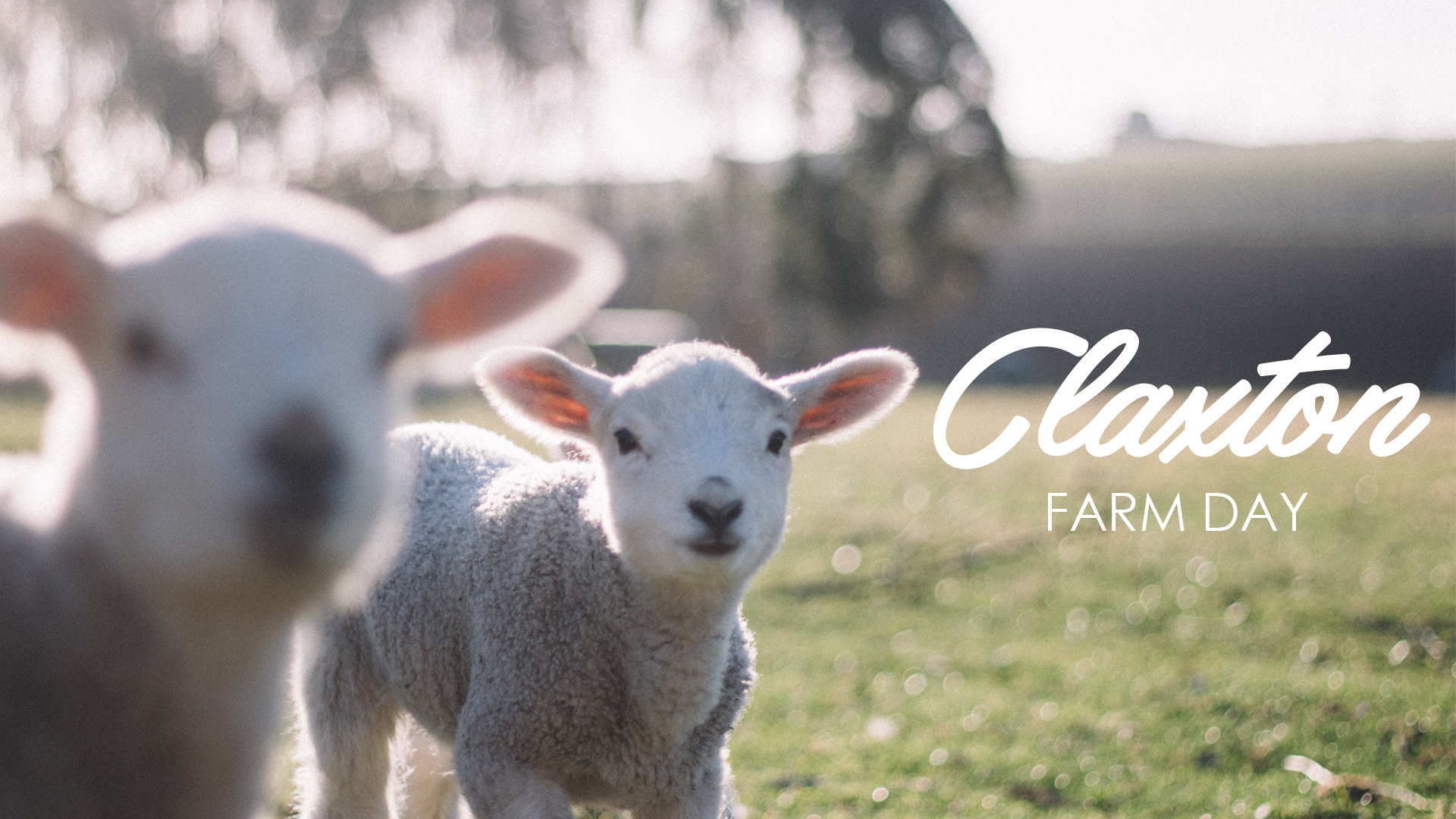 2018GUMCSCREEN-ClaxtonFarm.jpg