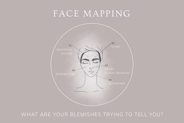 Great Article on Face Mapping by this Skin Care Company