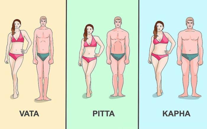 Ayurveda Dosha Body Type -