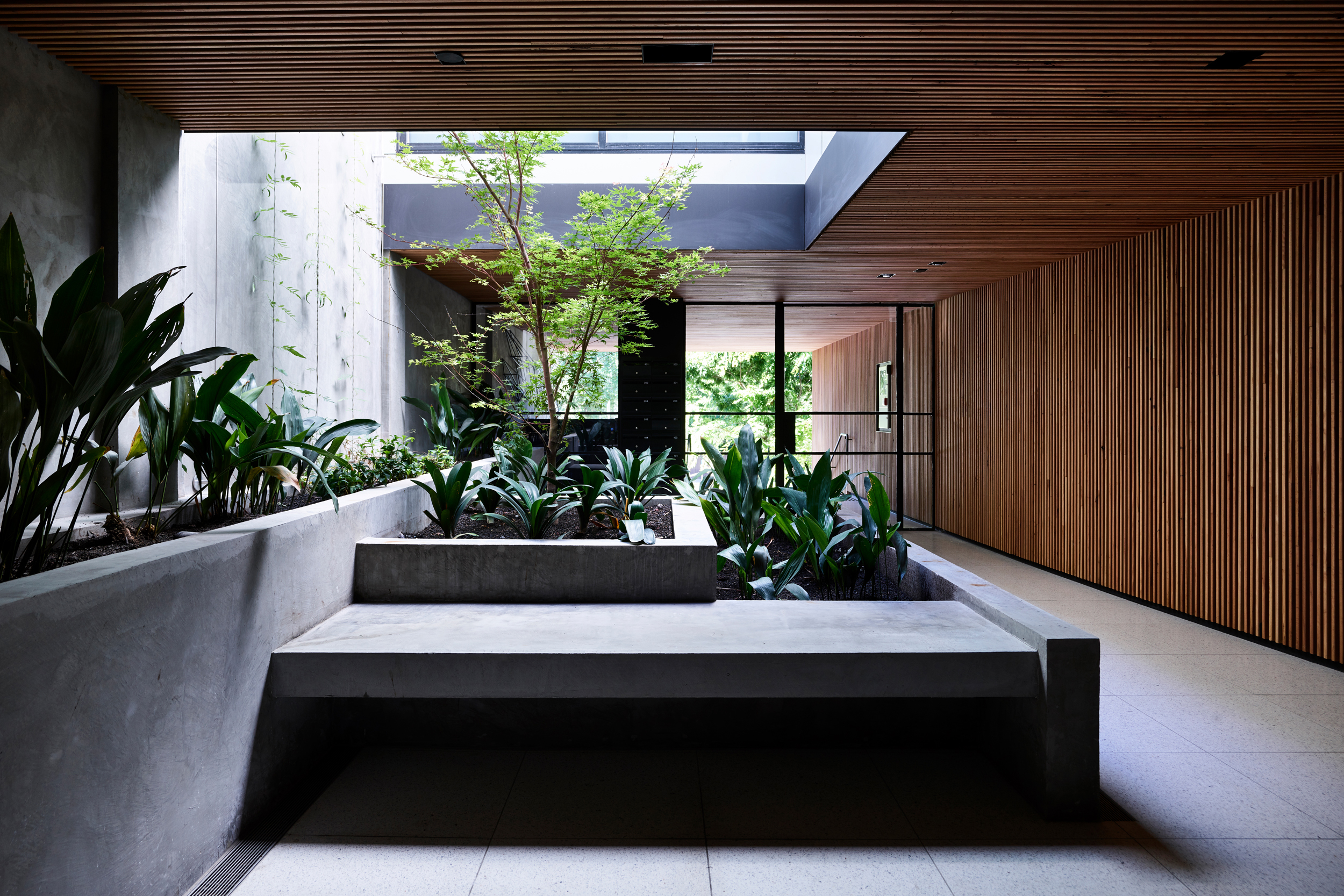 Holly Residences | Tom Robertson Architects | Photo: Derek Swalwell