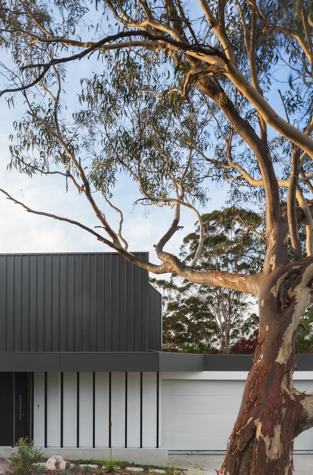 turramurra-house=noxon-giffen-architects-the-design-emotive--3.jpg