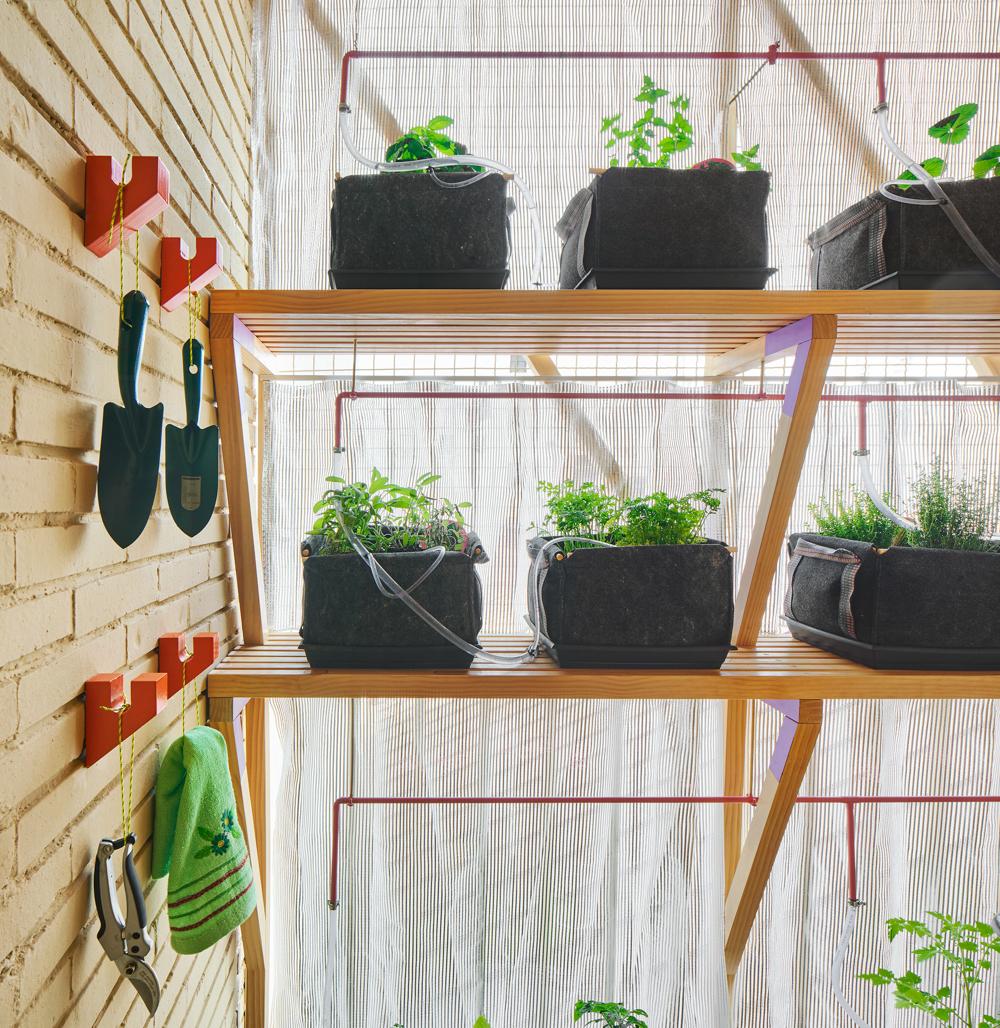 Garden in apartment building