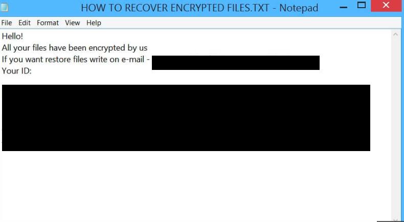 Example Rapid ransom notice .txt file