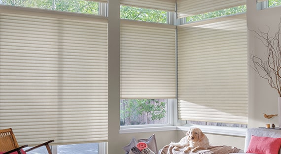SONNETTE™Sonnette™Cellular Roller Shades gently diffuse light through an innovative curved shape, providing ambiance and character while dispersing light to all angles of the room. -