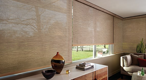 DESIGNER SCREEN SHADESFor excellent UV protection while maintaining your view of the outdoors, our Designer Screen Shades are available in varying levels of openness. Offering a minimal yet sophisticated look with light control, colour and style, they are the perfect shade for any room in the home even your patio or sunroom. -