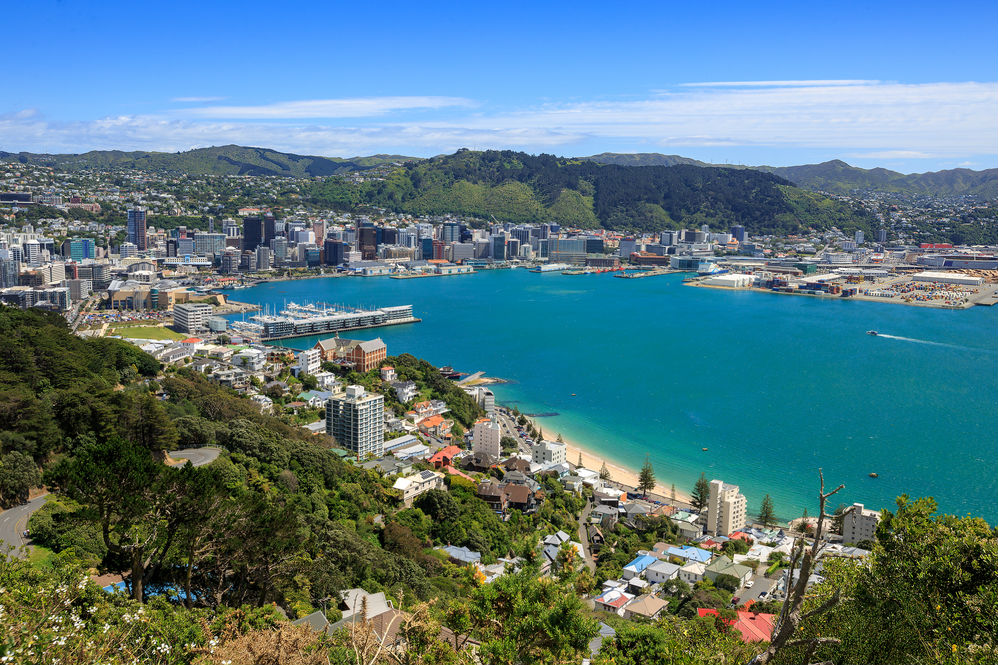 view-of-wellington-harbour-2.jpg